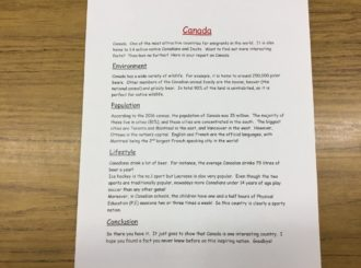 Y7:  Literacy:  Report Writing