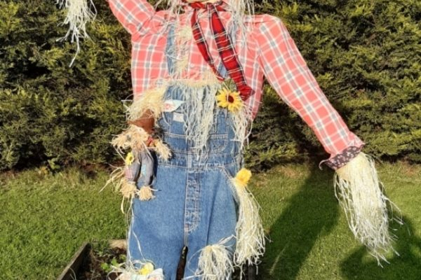 Scary Scarecrow Competition