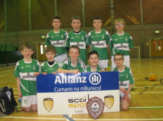 The Victorious Hurling Team